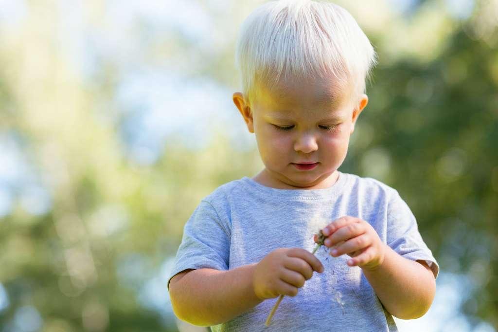 L'albinisme est dû à une anomalie génétique qui empêche la production de mélanine. © zinkevych, Adobe Stock