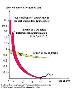 Graphique de l'atmosphère terrestre ancienne : évolution de la concentration d'oxygène, de -4 milliards d'années à notre ère. © DR, d'après Repères pratiques, Nathan