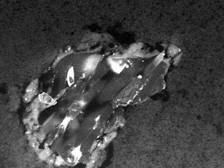 Grain de poussière cométaire essentiellement composé de silicates dégagé de l'aérogel. © Nasa