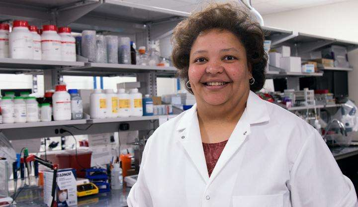 Rhonda Prisby est la principale auteure de cette recherche sur la calcification des artères. © The University of Texas, Arlington