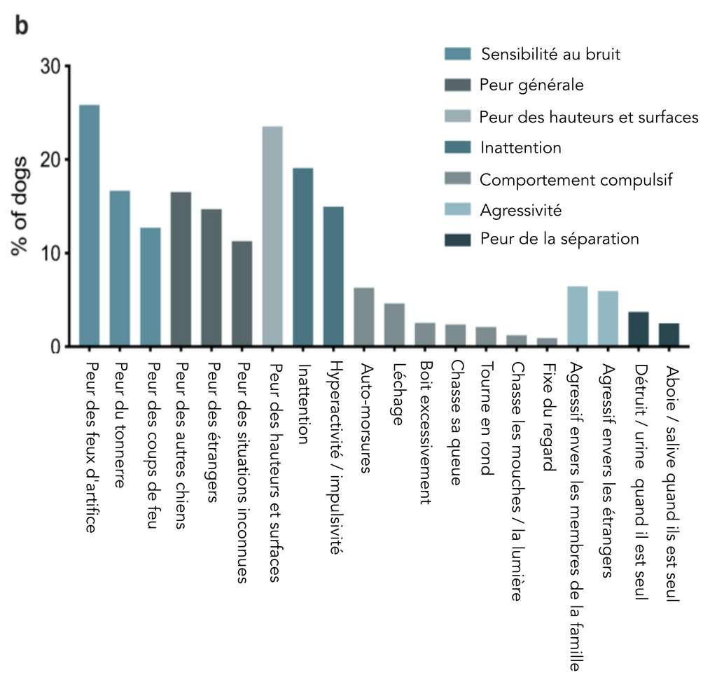 Les comportements anxieux les plus fréquents chez le chien. © Milla Salonen et al, Scientific Reports, 2020 ; adaptation et traduction C.D pour Futura