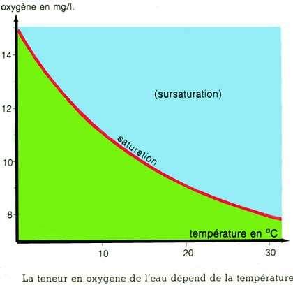Teneur en O2 dans une eau saturée d'air en fonction de la température. © DR, reproduction et utilisation interdites
