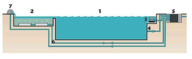 1. Bassin de baignade 2. Zone de filtration bio 3. Skimmer de surface 4. Aspiration en profondeur 5. Filtration mécanique et pompe placées dans un regard enterré 6. Tuyau d'aspiration et de pression 7. Cascade optionnelle. © TeichMester