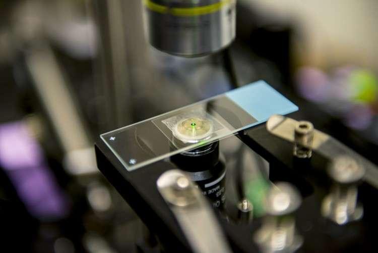 Sur cette image, le liquide émettant une lumière verte est refroidi par effet laser en exploitant le phénomène de déplacement anti-Stokes. © Dennis Wise, University of Washington