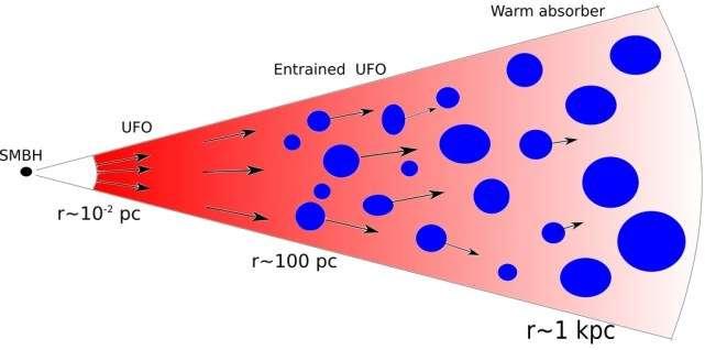 Un parsec (pc) vaut environ 3,2 années-lumière et SMBH désigne en anglais un Super Massive Black Hole, donc un trou noir supermassif. Pour comprendre ce schéma, lisez les explications ci-dessous. © R. Serafinelli, F. Tombesi, F. Vagnetti, et al.