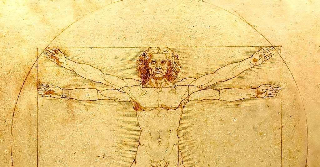 L'Homme de Vitruve de Léonard de Vinci, dessin à la plume, encre et lavis sur papier. © Luc Viatour, CCO