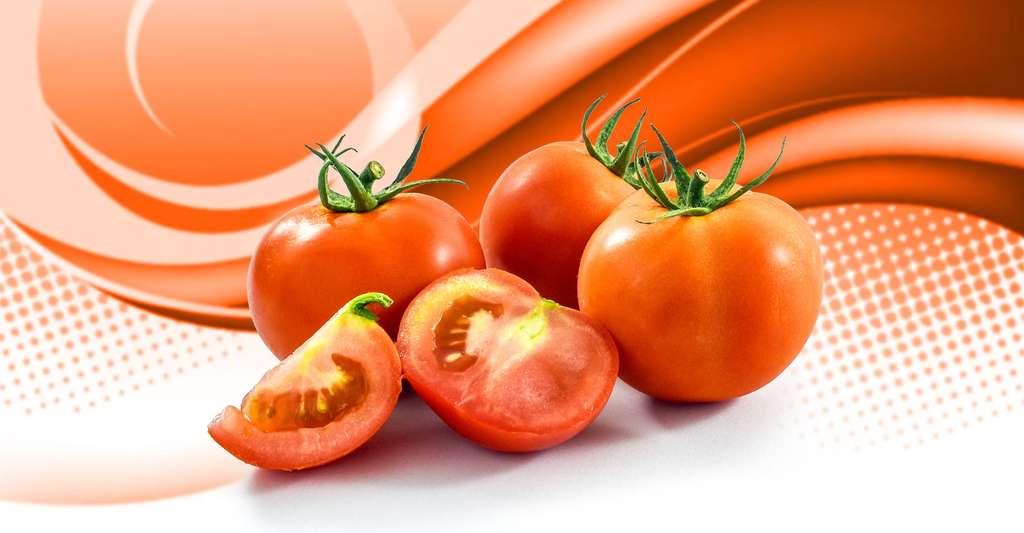 Quelles est l'origine du diabète de type 1 ? comment le prévenir ? Les fruits et légumes sont des aliments sains pour la santé ; peut-être sont-ils la solution. © Pondpony, Shutterstock