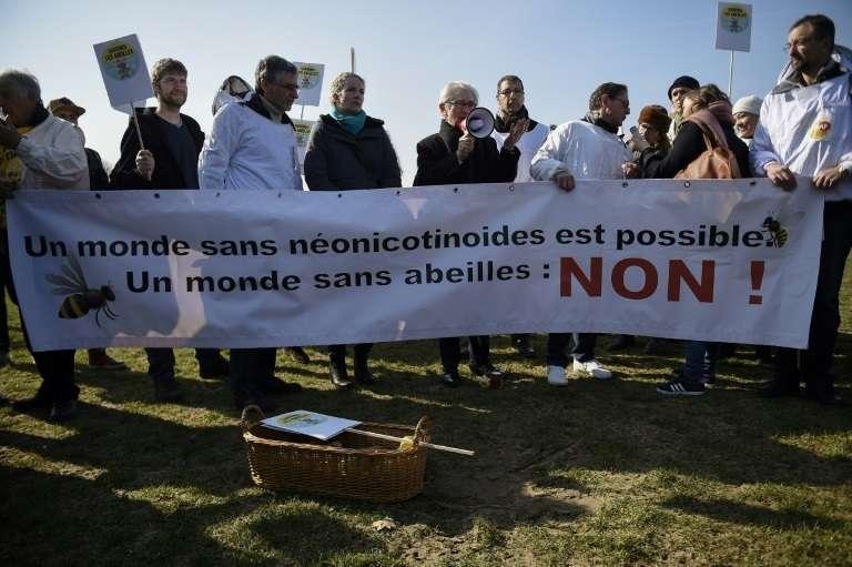 Rassemblement écologiste à Paris, le 15 mars 2016. © Lionel Bonaventure, AFP, Archives