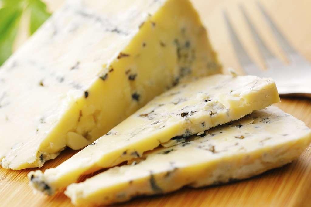 Les fromages à pâte persillée ne chauffent pas à la même vitesse. © Nishihama, Fotolia
