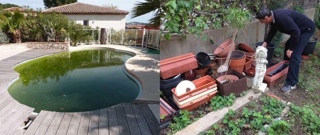 Les piscines hors service et les récipients (pots, pneus, etc.) stockés dans les jardins sont des exemples de gîtes larvaires aisément identifiables. © Cavem