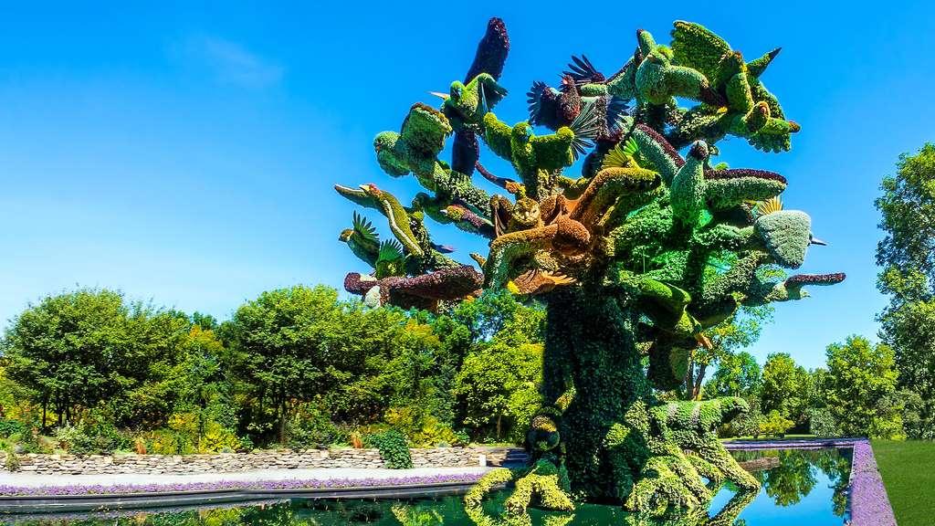 Sculpture végétale de l'arbre aux oiseaux, symbole de la biodiversité