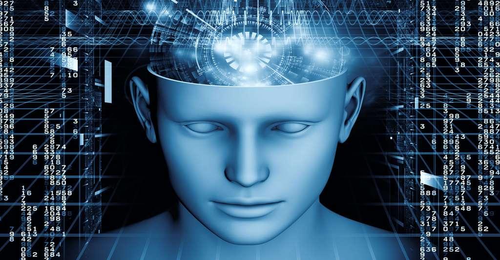Comment fonctionne notre cerveau ? © Agsandrew, Shutterstock