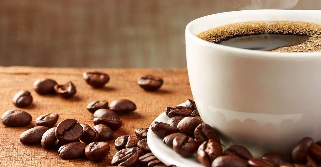 La caféine est un stimulant du système nerveux central. © portement, Shutterstock