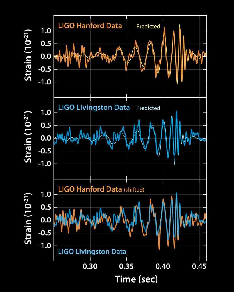On peut voir sur ces schémas le remarquable accord tant entre les signaux prédits par les simulations et ceux observés par Ligo à Handford et Livingston. Ils sont superposés sur le schéma en bas car ils ont été détectés à 0,007 seconde d'intervalle. © Ligo