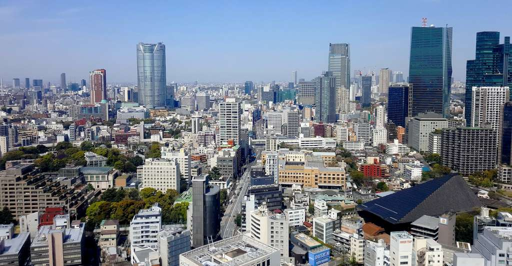 Selon Bruno David, c'est essentiellement notre emprise sur le territoire continental qui nuit à la biodiversité. Ici, la mégapole de Tokyo (Japon). © Alain Crépin, Adobe Stock