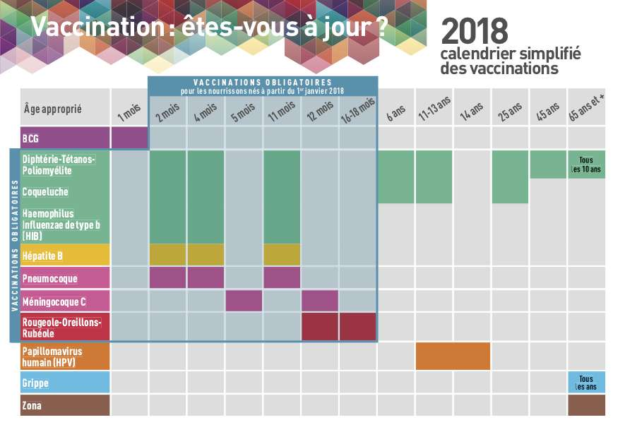Le calendrier vaccinal précise le nombre d'injections, le délai entre les injections et l'âge des rappels. © Vaccination-info-service.fr