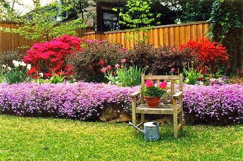 Le jardin de demain sera esthétique et respectueux de l'environnement. © StevenM-61/ Flickr - Licence Creative Common (by-nc-sa 2.0)