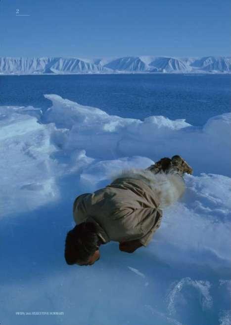 Les régions polaires, et en particulier l'Arctique, vivent un réchauffement plus rapide que les faibles latitudes. © Amap (image extraite du rapport)
