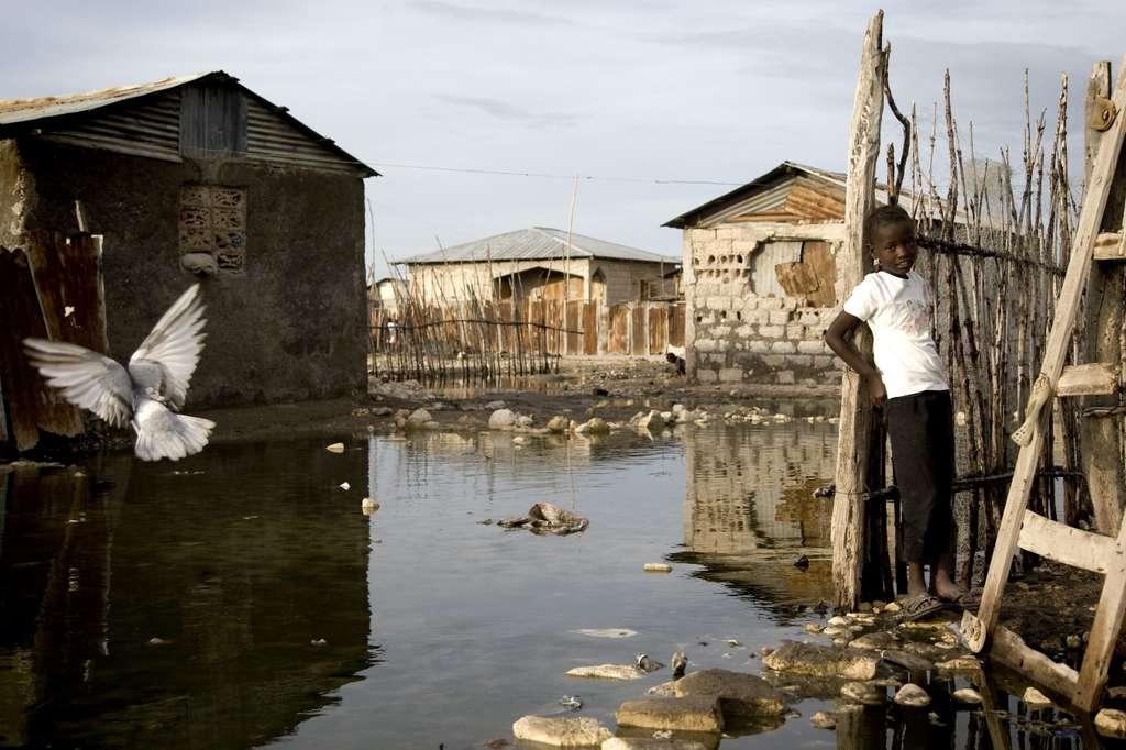 À cause du séisme en Haïti, le pays a été en grande partie détruit et les conditions sanitaires ont empiré. Le bacille du choléra aurait été involontairement amené par des soldats népalais venus aider les populations. La bactérie se transmet alors bien souvent par l'absorption d'eau contaminée. L'épidémie aurait fait au moins 7.500 victimes. © United Nations Photo, Fotopedia, cc by nc nd 2.0