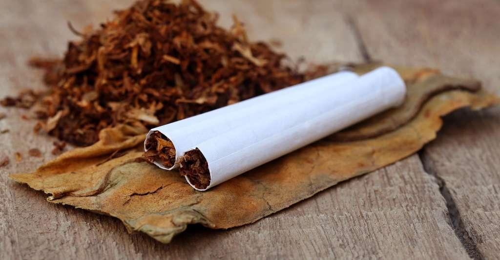 Les cigarettes sont aussi considérées comme une drogue. © Swapan Photography, Shutterstock