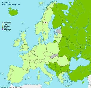 Carte hebdomadaire d'activité de la grippe en Europe. © www.eiss.org