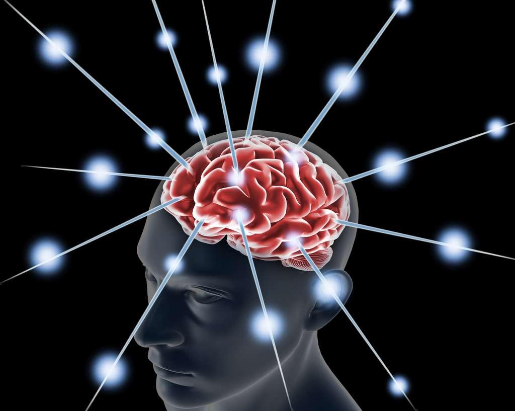 Le cerveau est sans cesse sollicité alors même qu'il est focalisé sur une tâche. © Jim, Adobe Stock
