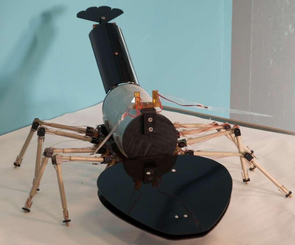 Robot langouste. © Jan Witting photography, DR