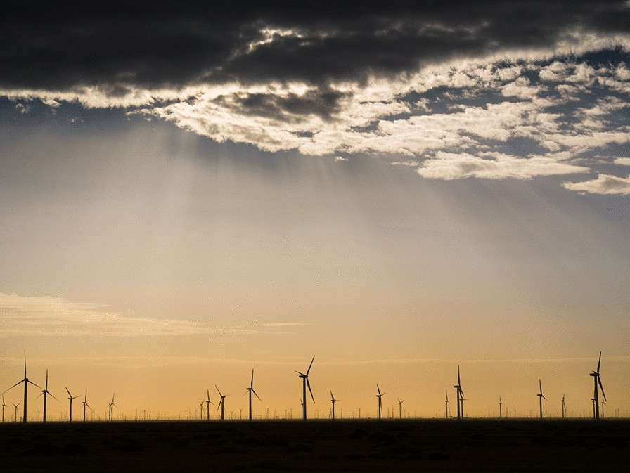 Guazhou accueille la plus grande concentration d'éoliennes au monde. © Kang Xu, College of Life Sciences, Université du Zhejiang (Chine)