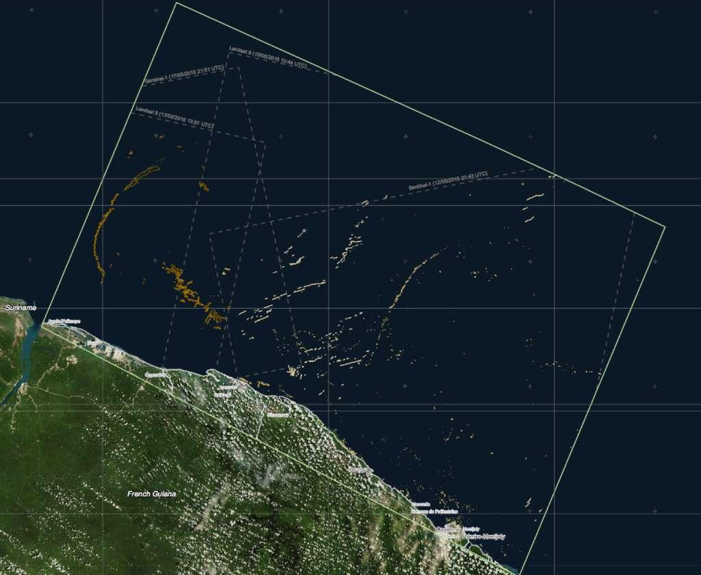 Sentinel 1A est notamment utilisé pour la surveillance de l'environnement maritime. Lorsqu'il passe au-dessus de la Guyane, il ne manque pas de rendre compte de la prolifération de l'algue appelée « sargasse ». © Copernicus data