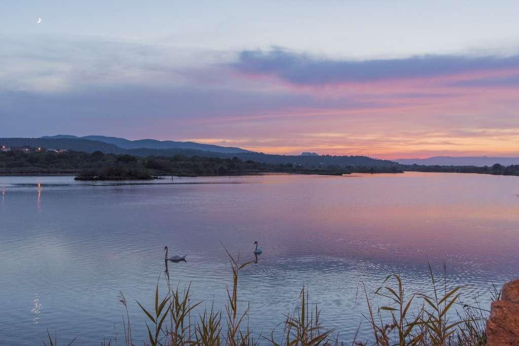 Une zone humide – les étangs de Villepey, en l'occurrence – dévoilant sa beauté cachée au coucher du soleil. © Robin Hacquard