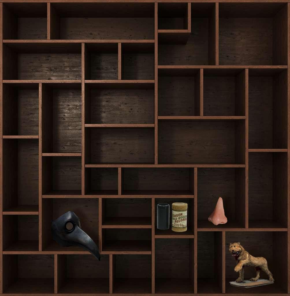 Et de quatre ! Rendez-vous dans deux semaines pour un nouveau chapitre du Cabinet de curiosités. © nosorogua, Adobe Stock