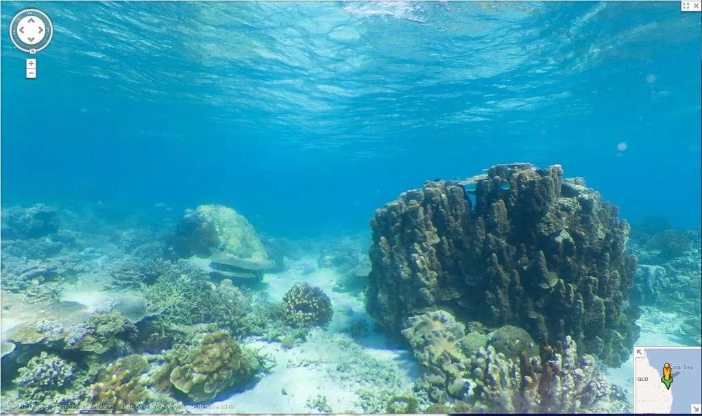 Près de la côte de l'île Wilson, sur la Grande Barrière de corail, en Australie. On utilise les commandes de Street View pour se promener à quelques mètres sous l'eau... © Google