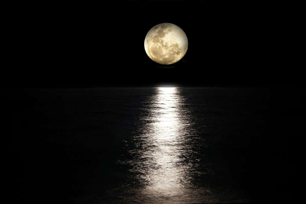 Pleine Lune sur l'horizon. © Mollyroselee, Pixabay, DP