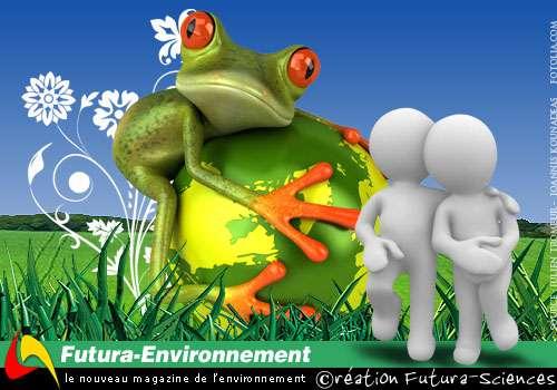 Le magazine de l'environnement