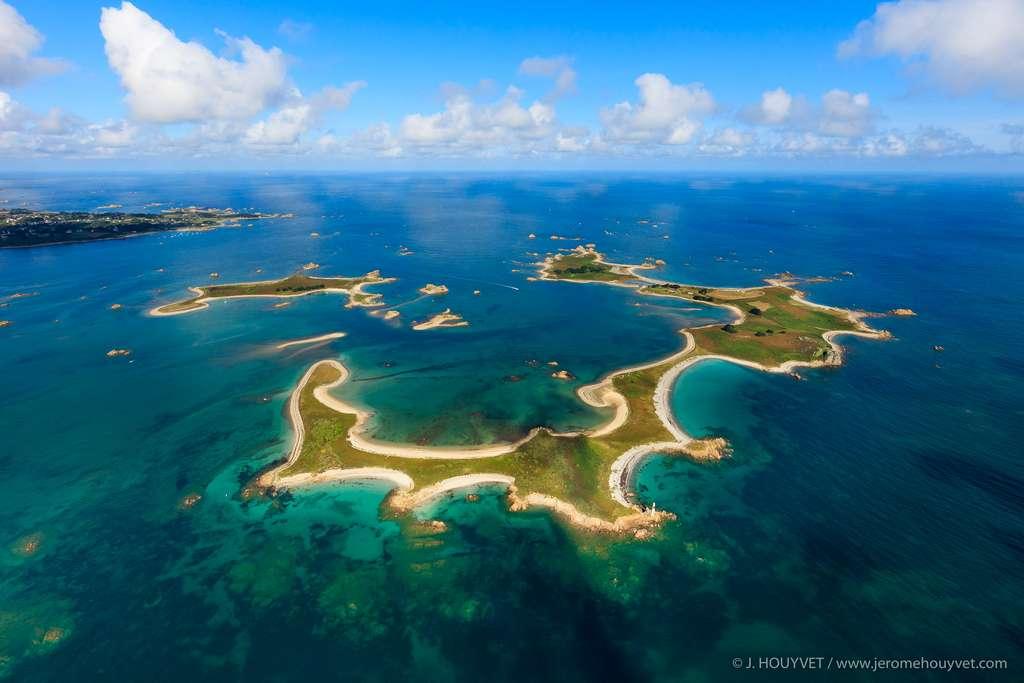 L'hippocampe de l'île d'Er