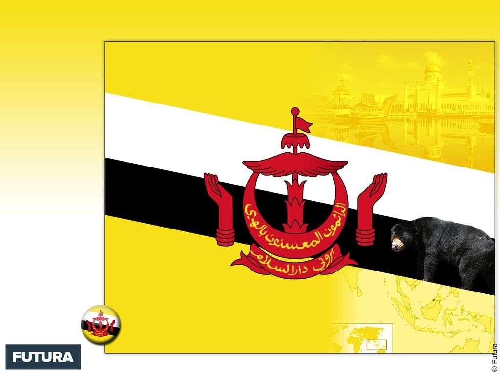 Drapeau : Brunei