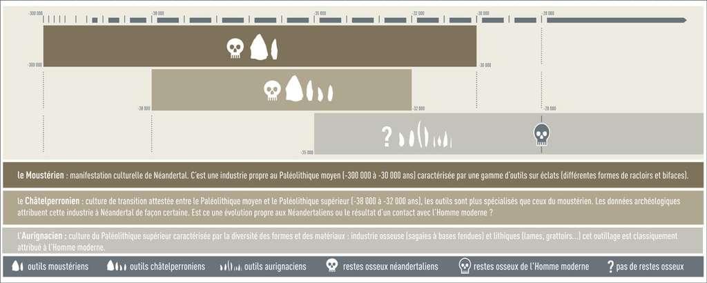 Schéma de la période de transition, en Europe : derniers Néandertaliens et premiers Hommes modernes. © DR