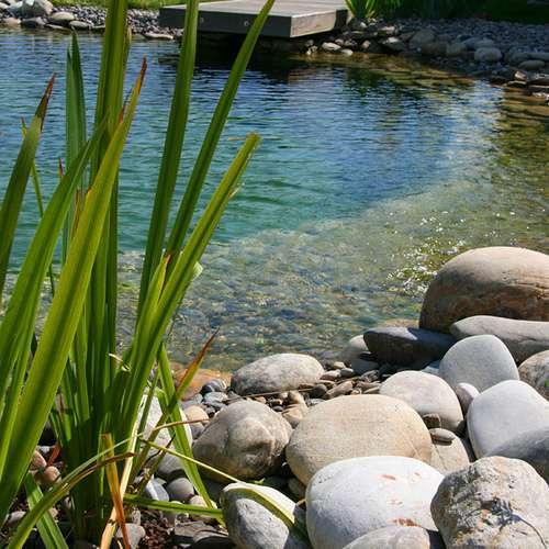Tout savoir sur les piscines écologiques. © CouleurLavande, Flickr, by-nd 2.0