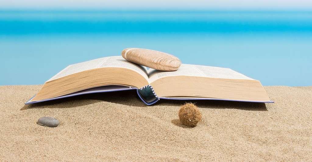 Ebook peut être utilisé sur la plage. © Puckillustrations, Fotolia