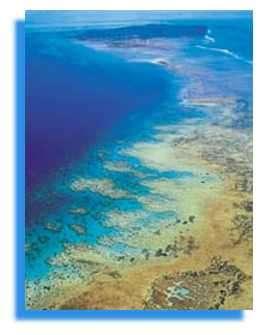 Récif Barrière, JP Quod, Mayotte