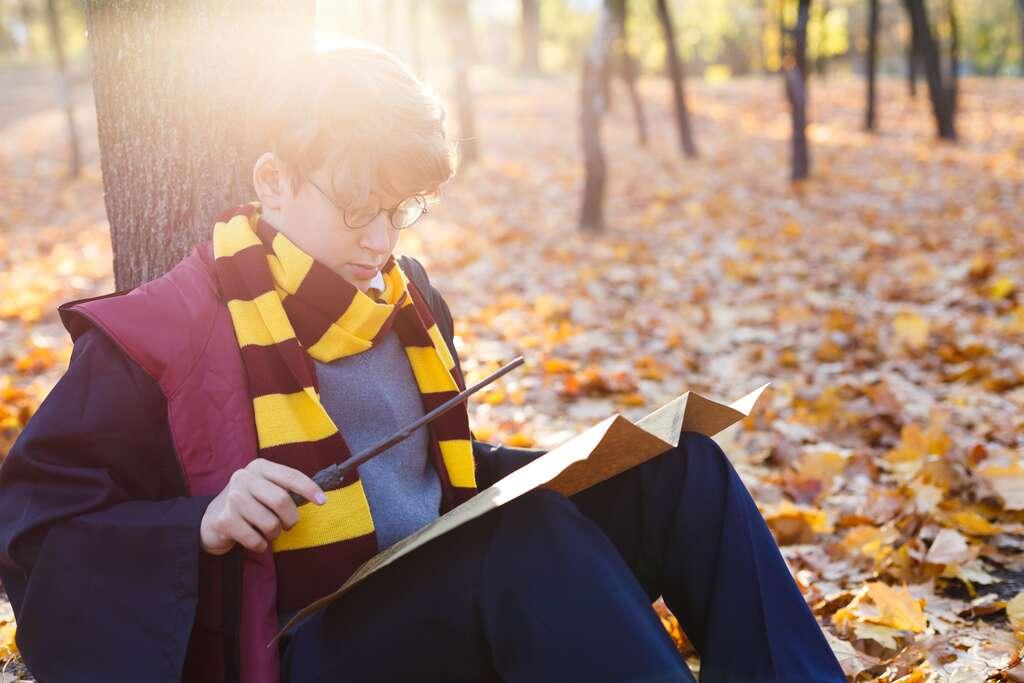 Lire Harry Potter en 47 minutes : miracle magique ou inférences étendues ? © Natali, Adobe Stock