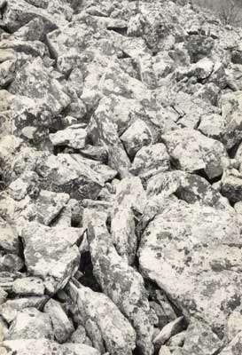 Détail de la disposition des blocs. Noter les blocs dressés sur la tranche qui traduisent le fluage en masse de la formation. La colonisation par les lichens témoigne de la stabilité actuelle de la formation.