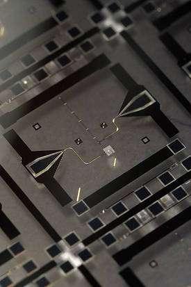 Le circuit supraconducteur utilisé par les chercheurs. Cliquez pour agrandir. Crédit : Erik Lucero UC Santa Barbara