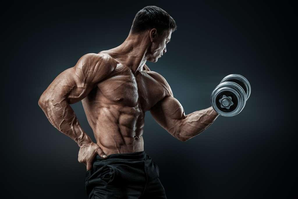 En dessous d'un certain taux de masse grasse, notre immunité peut en pâtir. © USM Photography, Adobe Stock