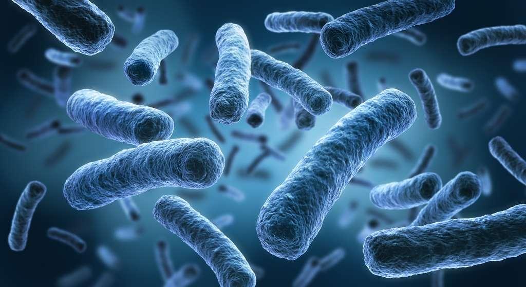 La vision du pathogène unique est bouleversée par les récentes découvertes au niveau du microbiote. © psdesign1, Fotolia