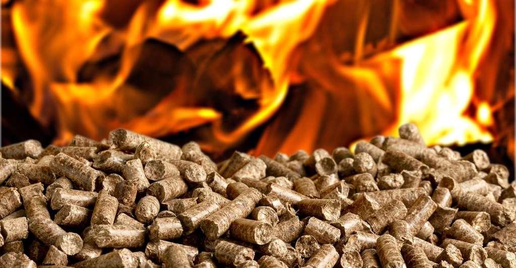 La combustion des granulés de bois est plus complète que celle des bûches de bois. © BillionPhotos.com, Fotolia