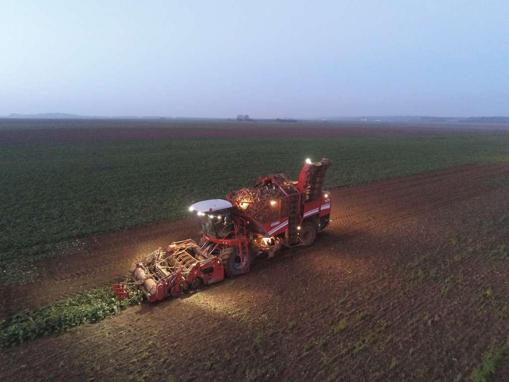 Un arrachage des betteraves en cours. © FarmerSeb, France Agri Twittos
