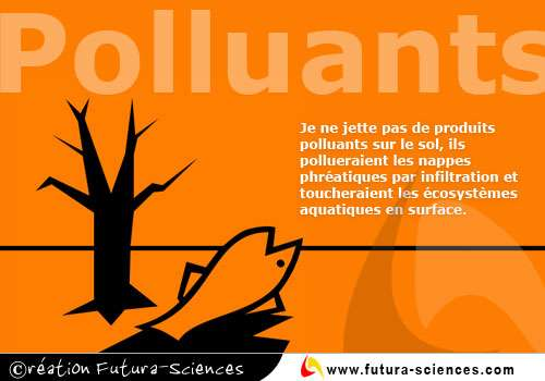 Attention polluants