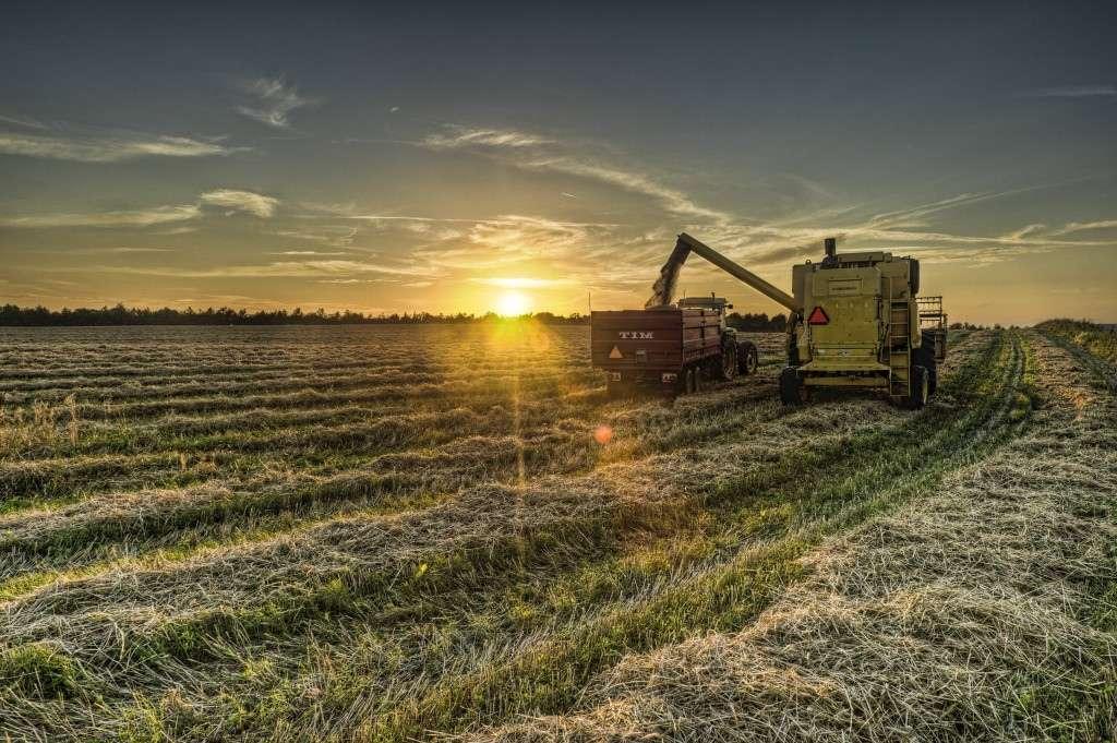 De nombreuses pratiques agroalimentaires devront changer si l'on souhaite nourrir sainement toute la population mondiale d'ici 2050. Il faudrait notamment développer des systèmes agricoles plus diversifiés, combinant par exemple plusieurs cultures, et établir de profondes coopérations avec les pays du Sud qui en ont besoin. © Bo47, Flickr, CC by-nc-sa 2.0