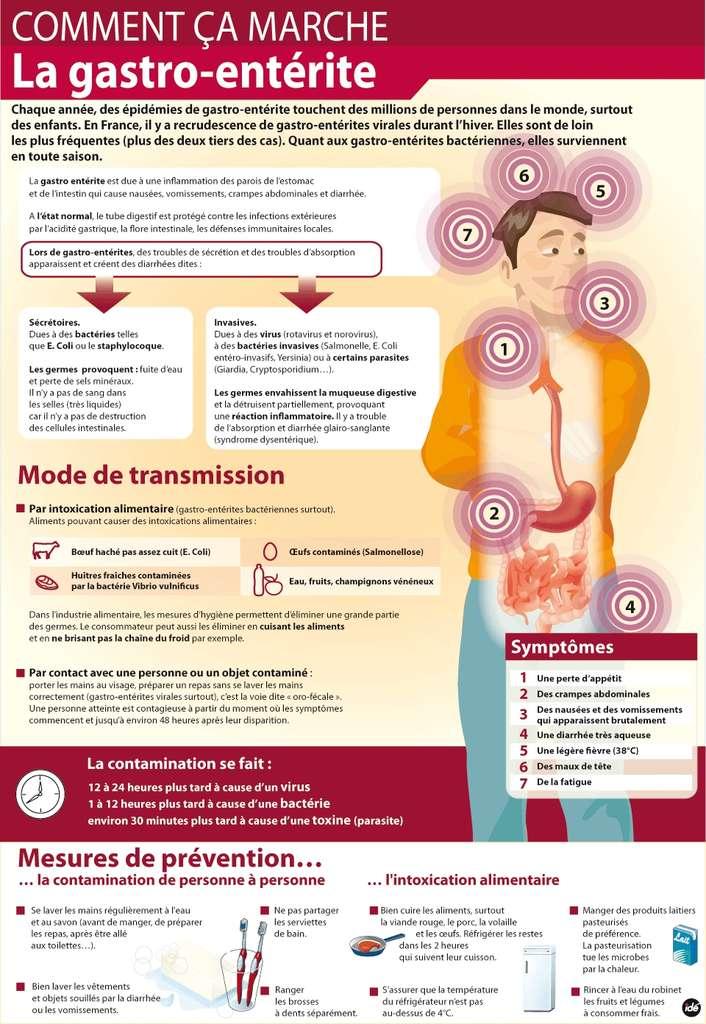 Cette infographie explicative reprend les causes et les moyens de prévention de la gastroentérite. © Idé